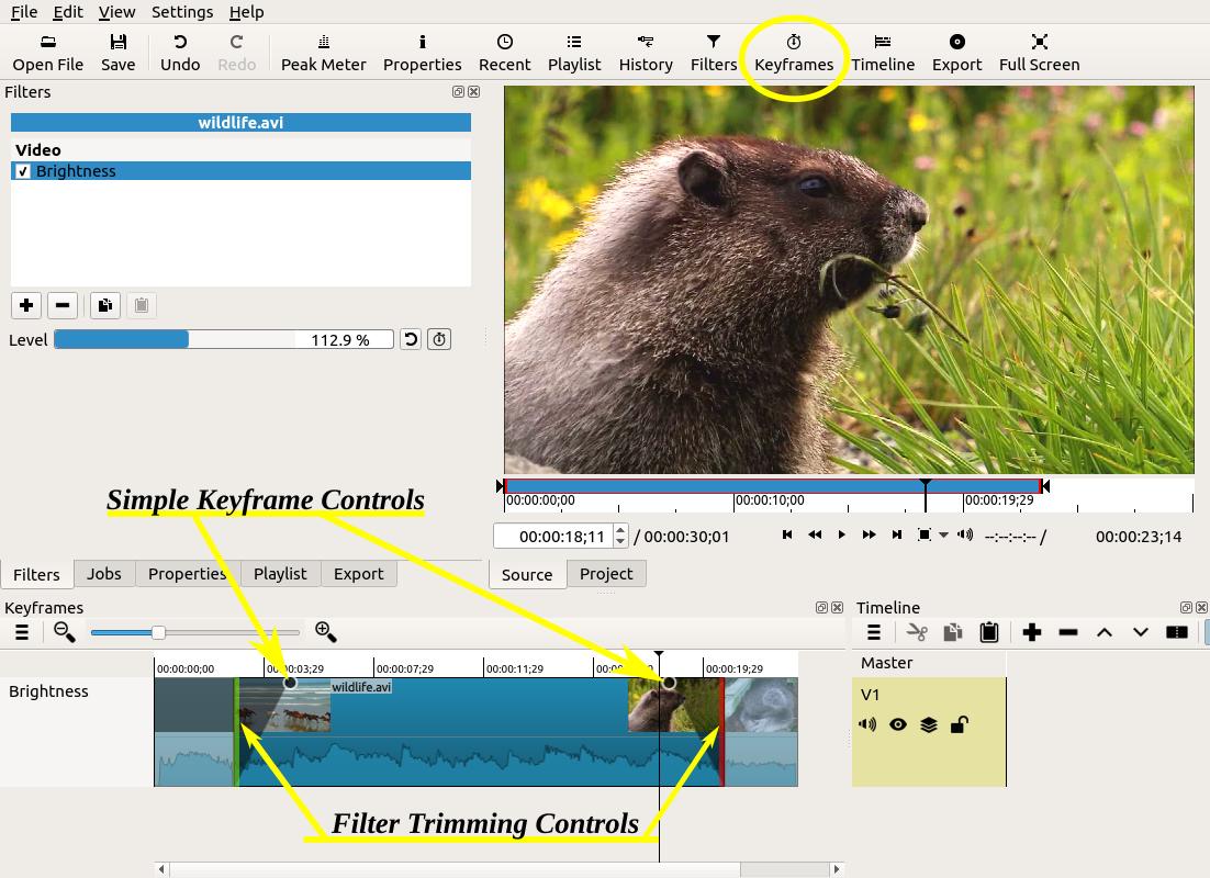 Screenshot of filter trimming and simple keyframes