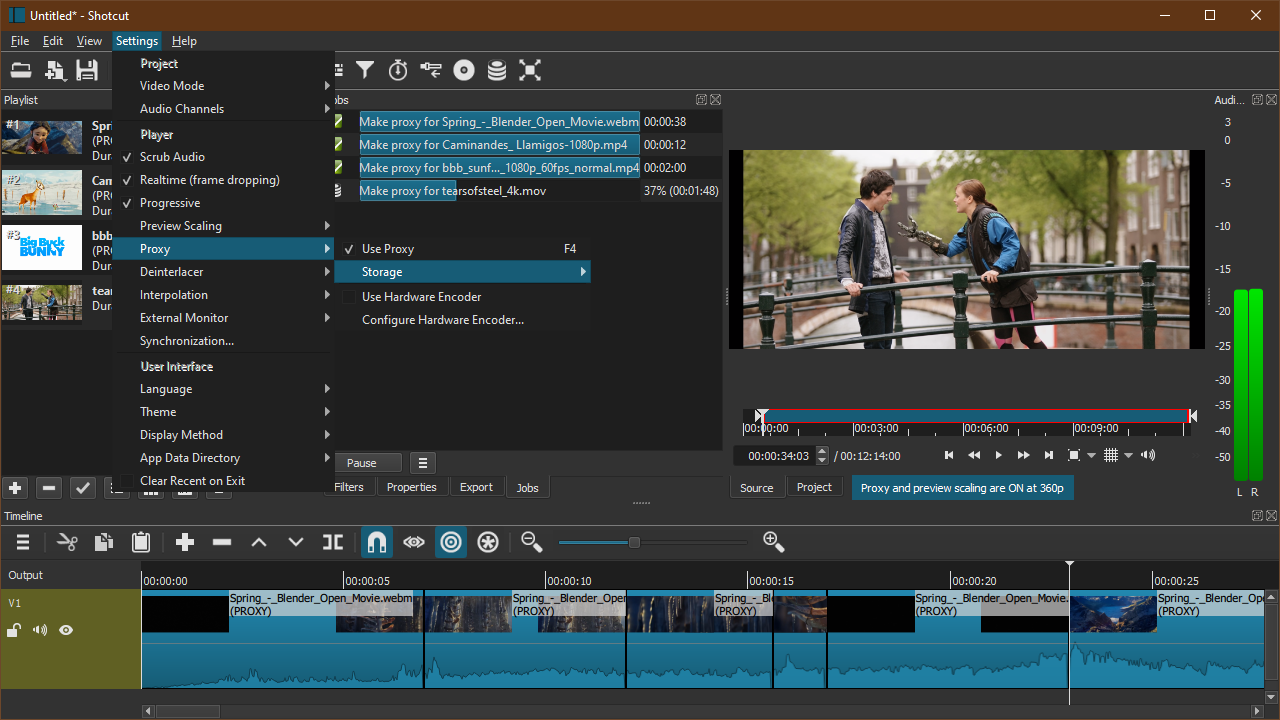 Screenshot of Proxy Editing