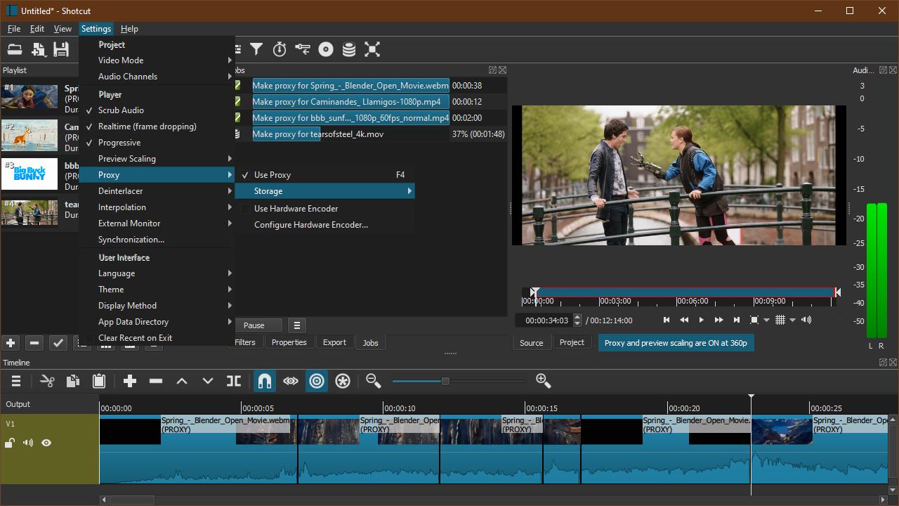Screenshot of Proxy Editing